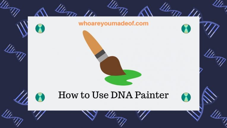 How to Use DNA Painter
