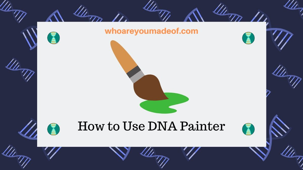 How To Use Dna Painter Who Are You Made Of
