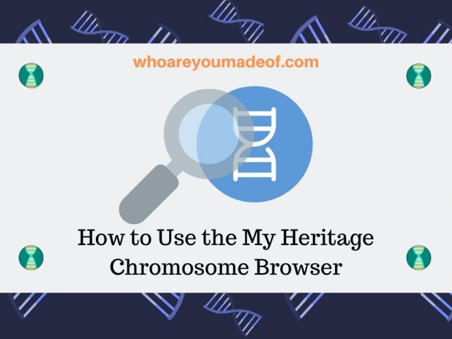 How to Use the My Heritage Chromosome Browser