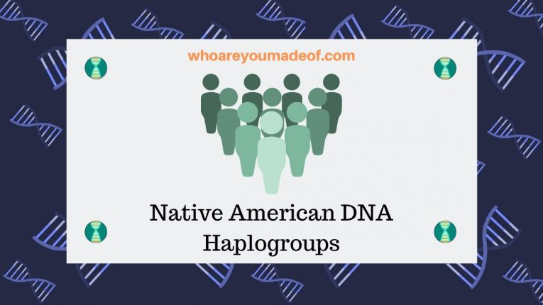 Native American DNA Haplogroups