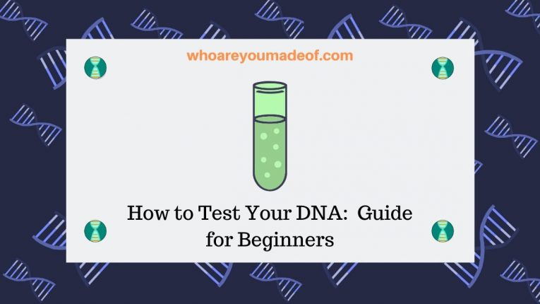 How to Test Your DNA_ Guide for Beginners