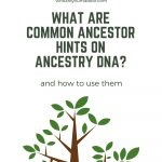 What Are Common Ancestor Hints on Ancestry DNA_(1)