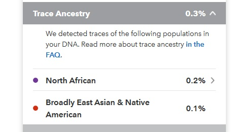 This person's results showed only .1% Broadly East Asian and Native American, as well as .2% North African