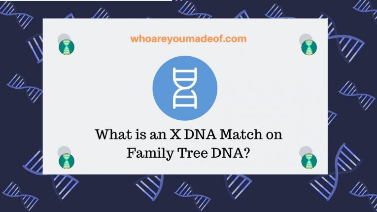 What is an X DNA Match on Family Tree DNA
