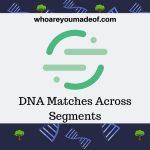 DNA Matches Across Segments