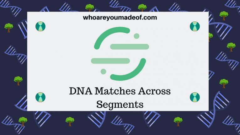 DNA Matches Across Segments