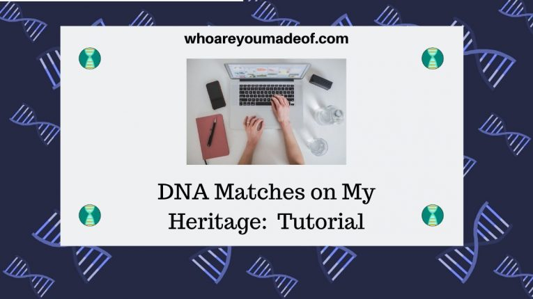 DNA Matches on My Heritage Tutorial