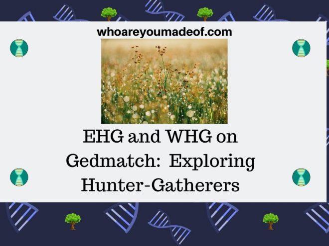 EHG and WHG on Gedmatch Exploring Hunter-Gatherers