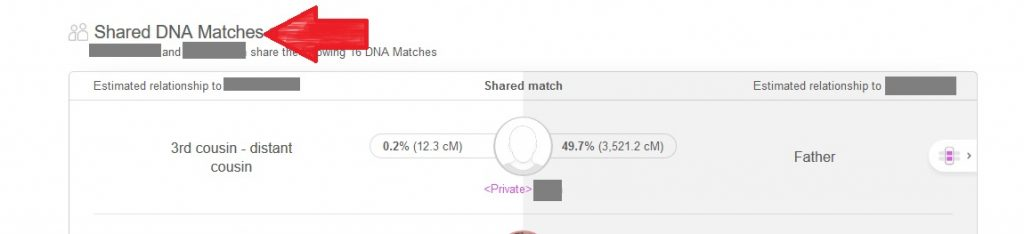 Red arrow pointing to the Shared DNA Matches section of the DNA match profile on My Heritage DNA