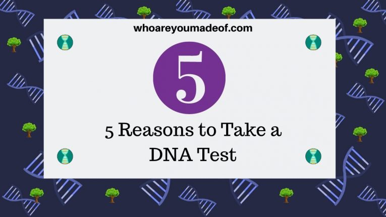 5 Reasons to Take a DNA Test
