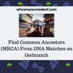 Find Common Ancestors (MRCA) From DNA Matches on Gedmatch