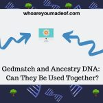 Gedmatch and Ancestry DNA Can Gedmatch and Ancestry DNA Can They Be Used Together Be Used Together (1)
