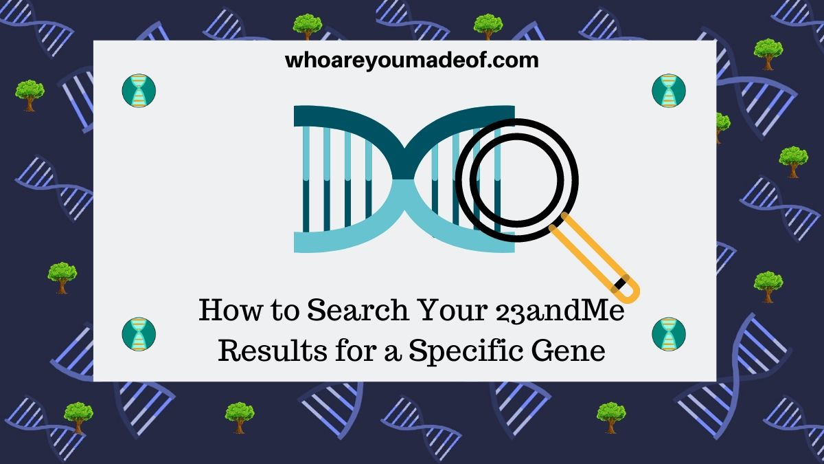 How to Search Your 23andMe Results for a Specific Gene