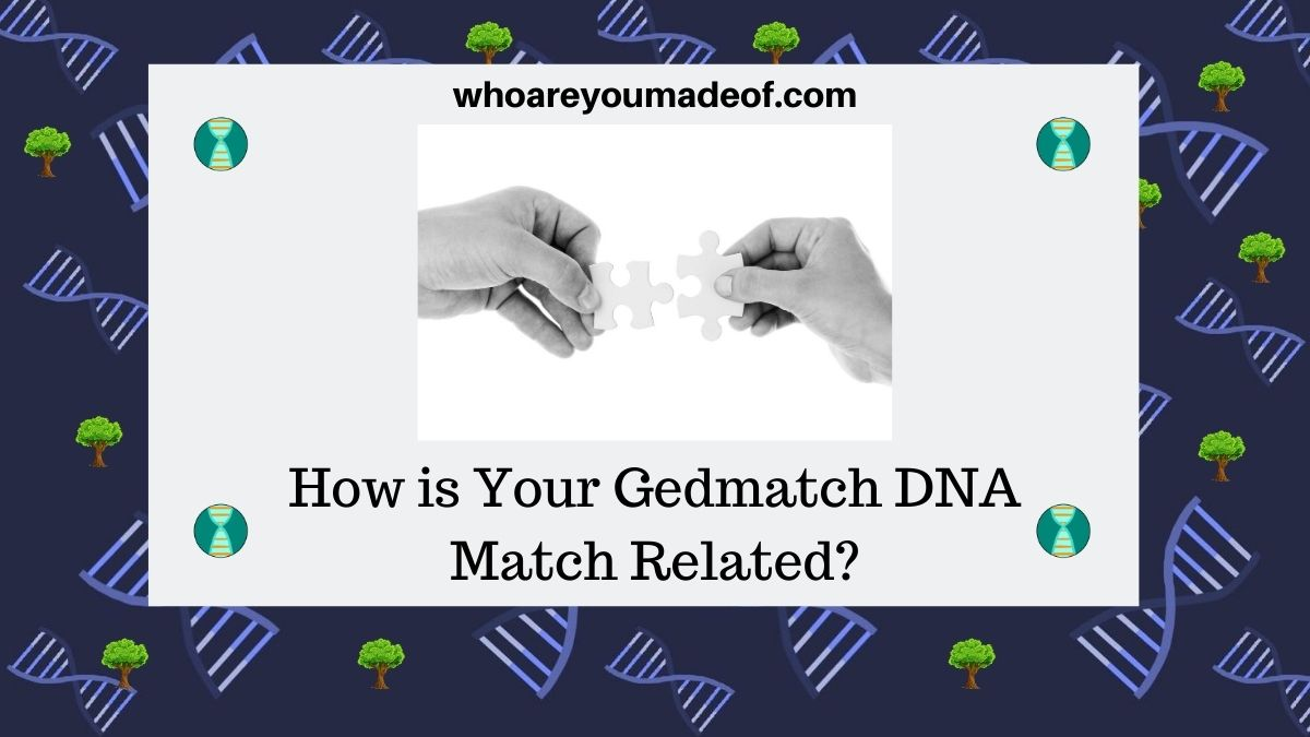 How is Your Gedmatch DNA Match Related