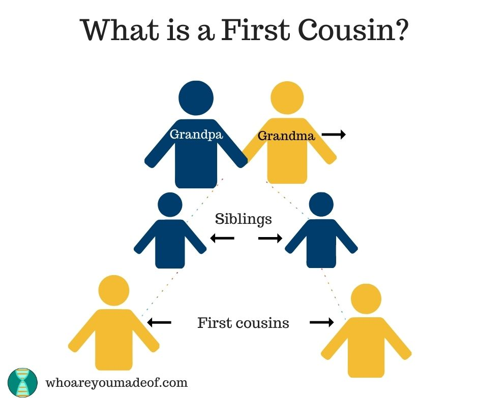 What is a First Cousin (2)