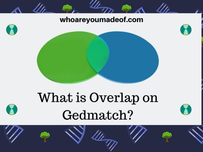 What is Overlap on Gedmatch