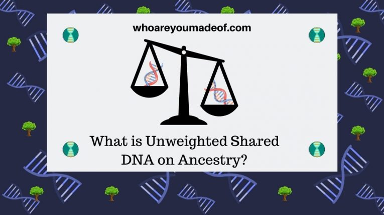 What is Unweighted Shared DNA on Ancestry