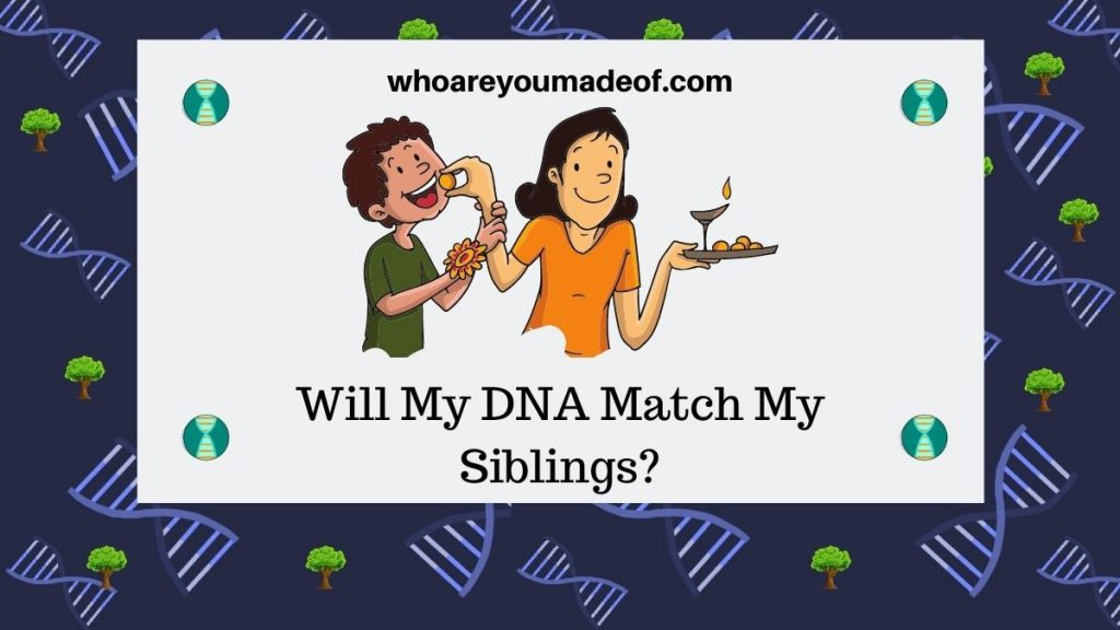 Will My DNA Match My Siblings? Featured image with graphic of siblings celebrating Raksha Bandhan, a Hindu ceremony