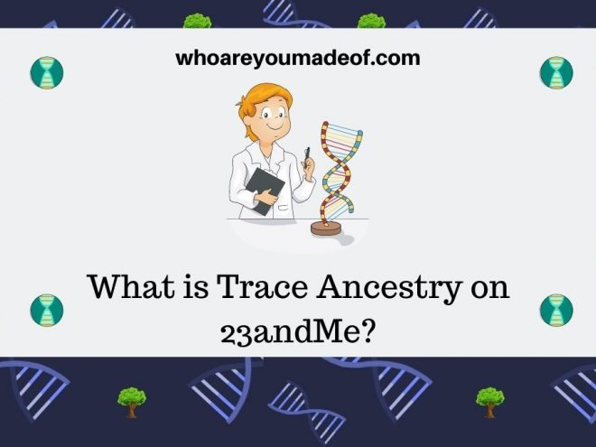 What is Trace Ancestry on 23andMe