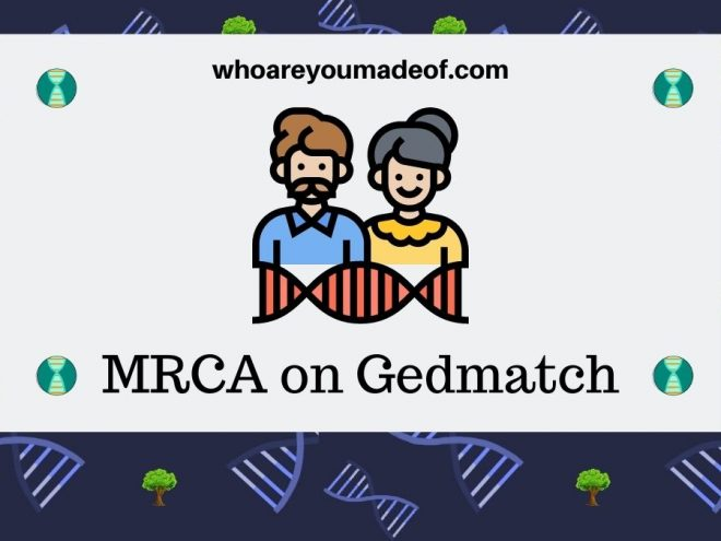 MRCA on Gedmatch What does it mean