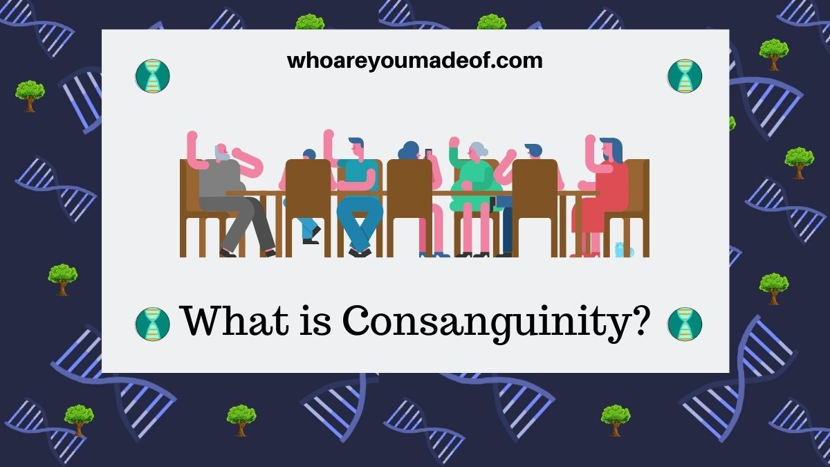 What is Consanguinity