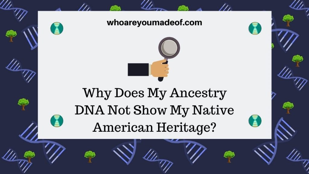 Why Does My Ancestry DNA Not Show My Native American Heritage