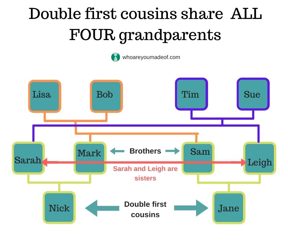 This graphic shows how the parents of two sets of siblings who married are all four the ancestors of the double first cousins, Nick and Jane