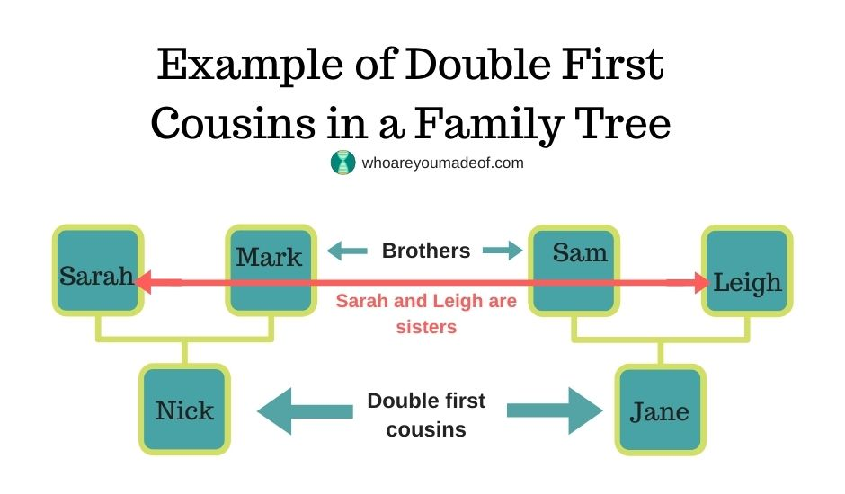 Example of double first cousins in a family tree, sarah and leigh, siblings, are married to sam and mark, who are also siblings
