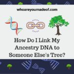 How Do I Link My Ancestry DNA to Someone Else's Tree