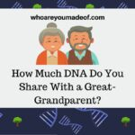 How-Much-DNA-Do-You-Share-With-a-Great-Grandparent-