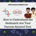 How to Understand the Gedmatch Are Your Parents Related Tool