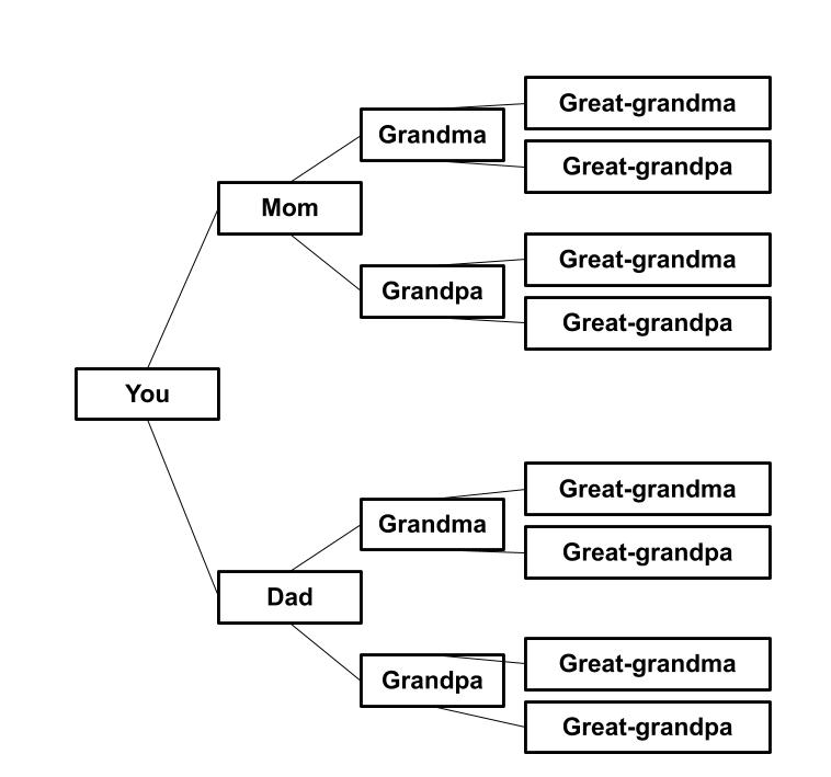 Example of a pedigree chart going back three generations to the great-grandparents.  This chart uses generic relationship names (mom, dad, grandma) and is black text on a white background