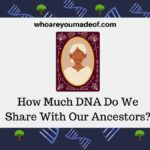 How Much DNA Do We Share With Our Ancestors?
