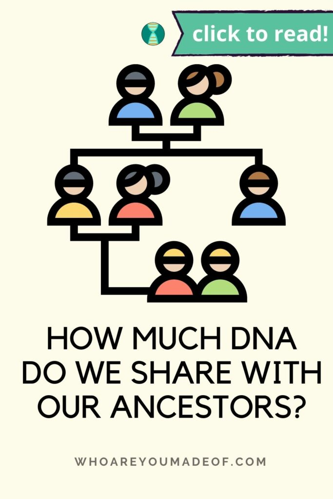 """Pin title of """"how much DNA do we share with our ancestors"""" along with a graphic of a pedigree chart on a pale yellow background"""""""