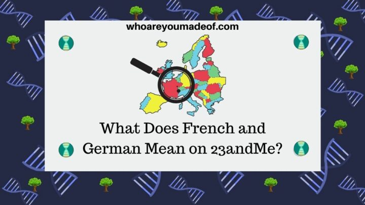 What Does French and German Mean on 23andMe decorative image with map of Europe and magnifying glass over France, the Netherlands, and Germany