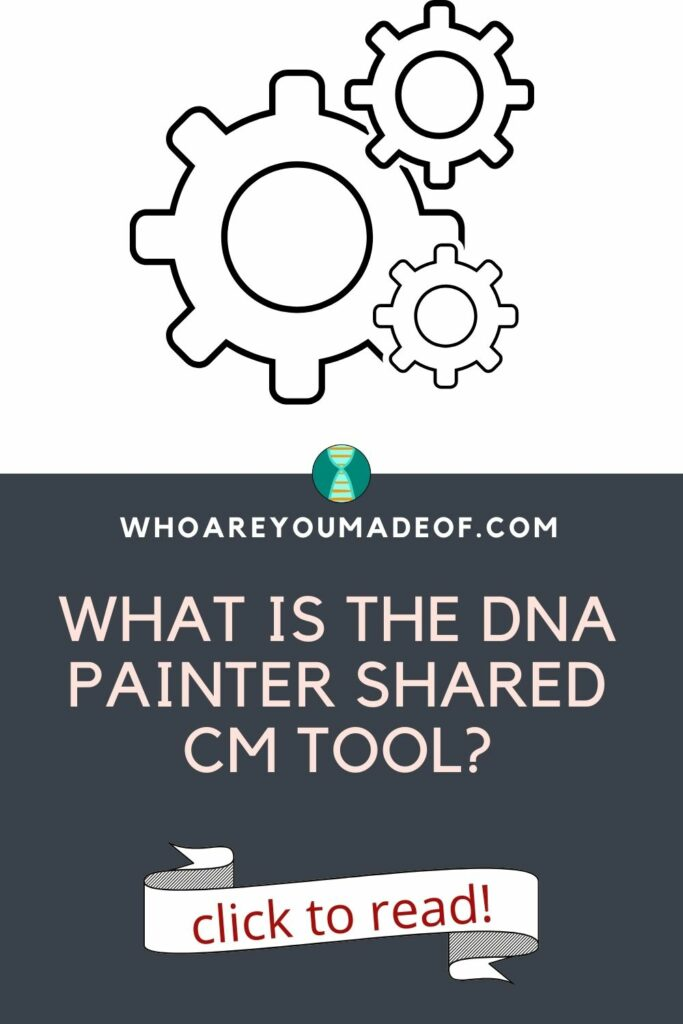graphic of gears and the pin title: What is the DNA Painter Shared cM Tool?