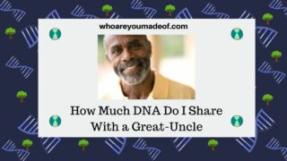 How Much DNA Do I Share With a Great-Uncle