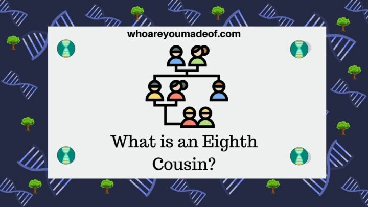 What is an Eighth Cousin