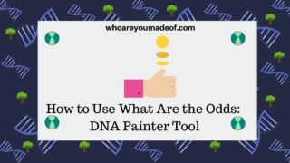 How-to-Use-What-Are-the-Odds-DNA-Painter-Tool