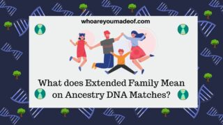 What does Extended Family Mean on Ancestry DNA Matches