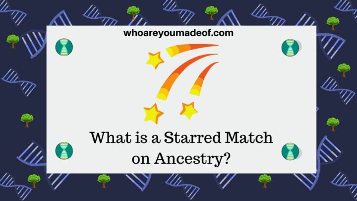 What is a Starred Match on Ancestry?