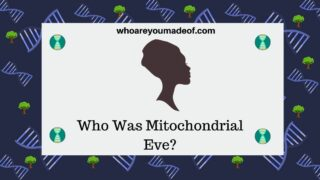 Who Was Mitochondrial Eve