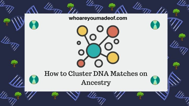 How to Cluster DNA Matches on Ancestry