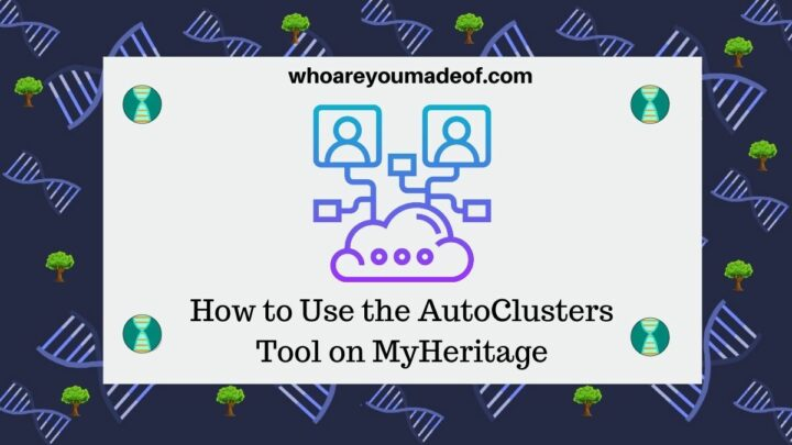 How to Use the AutoClusters Tool on MyHeritage