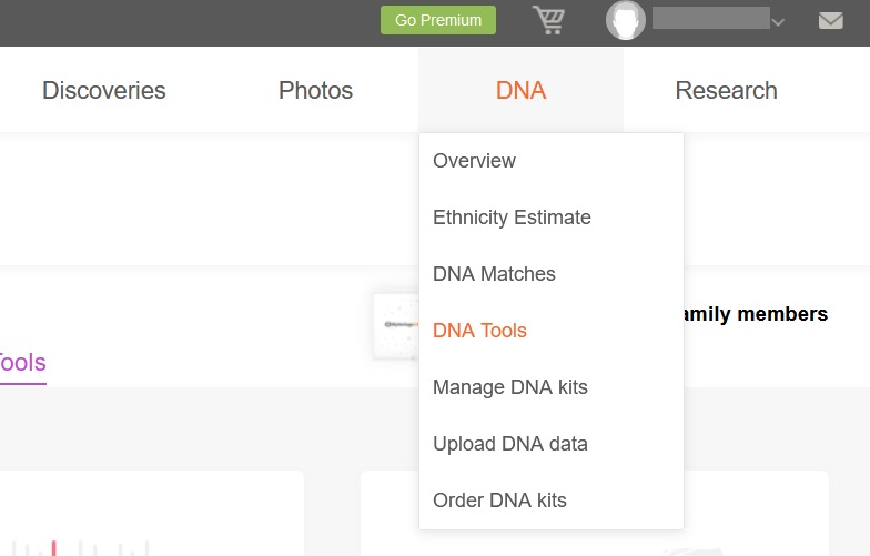 screenshot of the menu that appears if you hover over the DNA tab in your MyHeritage account - DNA Tools is the 4th option on the dropdown menu