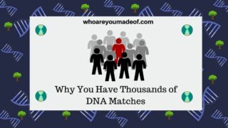Why You Have Thousands of DNA Matches