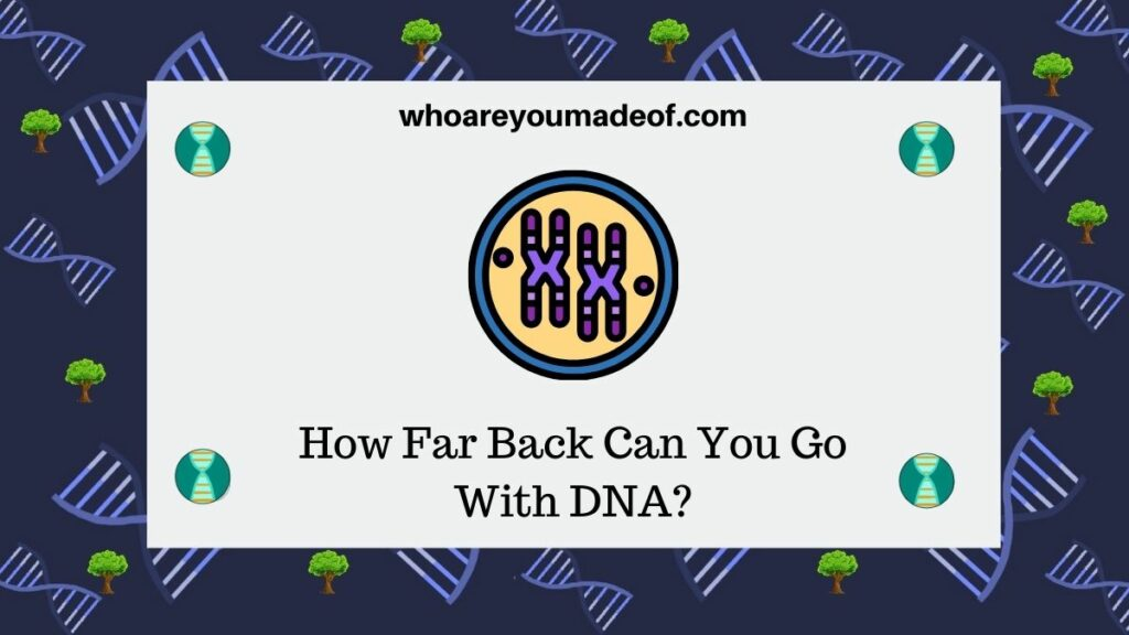 How Far Back Can You Go With DNA?