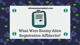 What Were Enemy Alien Registration Affidavits