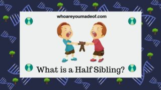What is a Half Sibling?