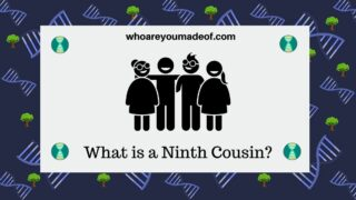 What is a Ninth Cousin?